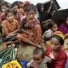 وظایف کشورهای اسلامی و جهان اسلام در مساله مسلمانان میانمار  گفتگو با دکتر علی اکبر ضیایی