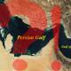 به دول عربی متذکر شویم خطر اصلی منطقه، اسرائیل است نـه ایران